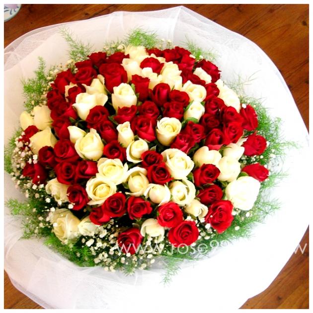 A0004/99朵紅白玫瑰花束 1