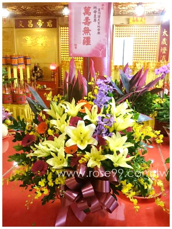 H005神誕獻壽盆花 1