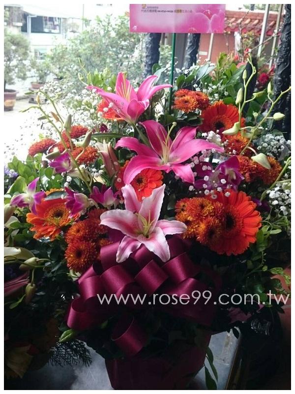 H007祈福求願盆花 1